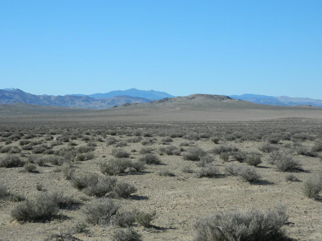 Pumpkin Hollow Desert
